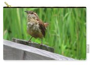 Baby House Wren Carry-all Pouch