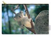 Baby Koala Bear Carry-all Pouch