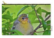 Baby Oriole Carry-all Pouch