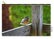 Baby Robin  Carry-all Pouch