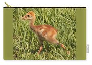 Baby Sandhill Crane Carry-all Pouch