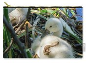 Baby Swan Resting Carry-all Pouch