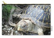 Baby Tortoise Carry-all Pouch