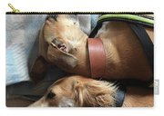 Back 2 Back - Ava And Finly Relaxing At Carry-all Pouch