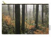 Backlit Bracken Ferns Carry-all Pouch
