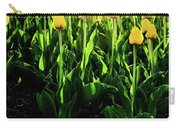 Backlit Tulips Carry-all Pouch