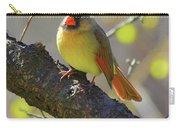 Backyard Bird Female Northern Cardinal Carry-all Pouch