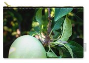 Backyard Garden Series - 2 Apples Carry-all Pouch