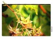 Backyard Garden Series - One Ripe Raspberry Carry-all Pouch