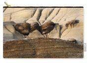 Badlands Drumheller Alberta Canada 4 Carry-all Pouch