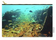 Bahamas Shipwreck Fish Carry-all Pouch