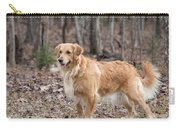 Bailee The Golden Carry-all Pouch