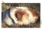 Bailey Resting Carry-all Pouch