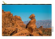 Balancing Rock Carry-all Pouch