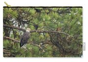 Bald Eagle In A Pine Tree, No. 4 Carry-all Pouch