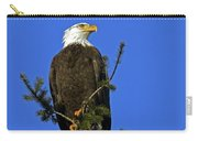 Bald Eagle On Blue Carry-all Pouch