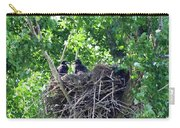 Bald Eaglet's 5 Wks 2 Carry-all Pouch