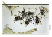 Bald Faced Hornets Carry-all Pouch