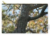 Bald Head Tree Carry-all Pouch