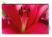 Ballerina Lily Carry-all Pouch