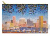 Baltimore Inner Harbor Carry-all Pouch
