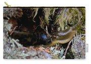 Banana Slug Eleven Carry-all Pouch