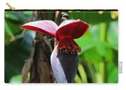 Banana Tree --plantain II Carry-all Pouch