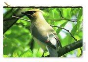 Bandit Bird Carry-all Pouch