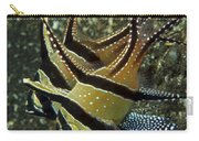 Banggai Cardinalfish With Egg, North Carry-all Pouch