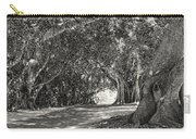 Banyan Street 3 Carry-all Pouch