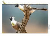 Bare-faced Go-away-birds Corythaixoides Carry-all Pouch
