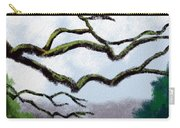 Bare Tree Branches Carry-all Pouch