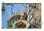Barn Owl Owlet Stretches Carry-all Pouch