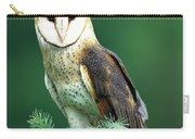 Barn Owl Tyto Alba Portrait, Hudson Carry-all Pouch