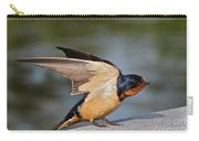 Barn Swallow Carry-all Pouch by Byron Varvarigos