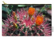 Barrel Cactus II Carry-all Pouch