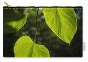 Basswood Leaves Against Dark Forest Background Carry-all Pouch