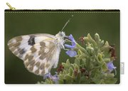 Bath White Carry-all Pouch