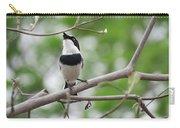 Batis Bird Carry-all Pouch