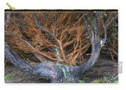 Battered Cypress With Orange Alga Carry-all Pouch