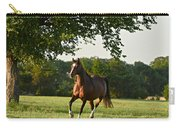 Bay Arabian Mare Carry-all Pouch