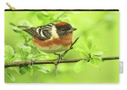 Bay-breasted Warbler Carry-all Pouch