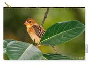 Baya Weaver Carry-all Pouch