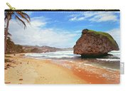Beach Wonders Carry-all Pouch
