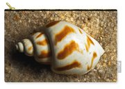 Beached Shell Carry-all Pouch