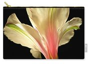 Beaming With Joy Carry-all Pouch