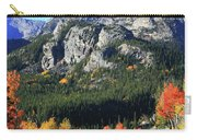 Bear Lake Road In Autumn Carry-all Pouch