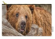Bear Nature Boy Carry-all Pouch