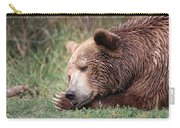 Bear Sleeping Carry-all Pouch