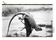 Bearded Lizard Carry-all Pouch